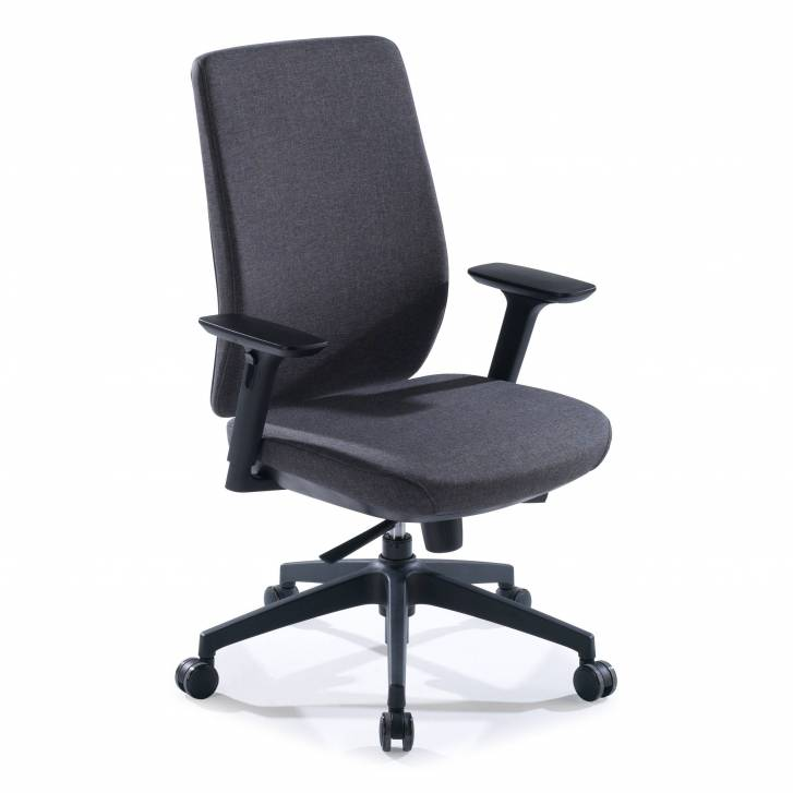 Wind Chair Upholstered Anthracite