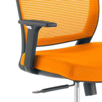 Nicole Chair Orange