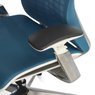 Miller ergonomic chair blue