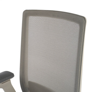 Physix chair grey